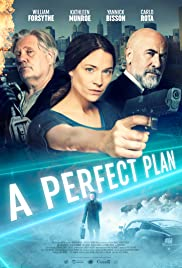 Watch Movie A Perfect Plan