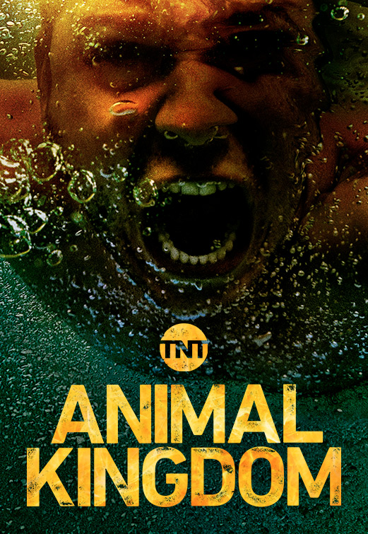 Watch Movie Animal Kingdom - Season 3
