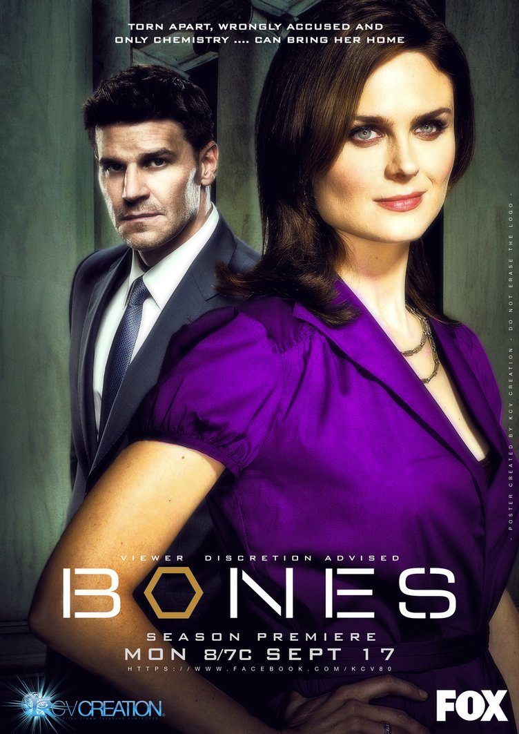 Watch Movie Bones - Season 8