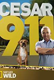 Watch Movie Cesar 911 season 3