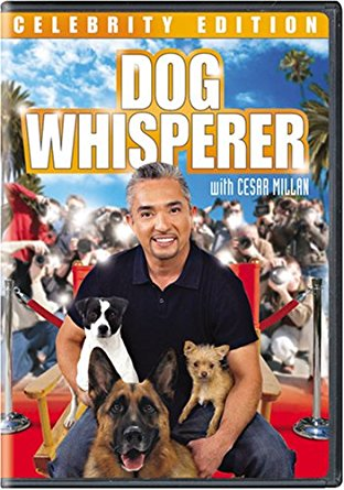 Watch Movie Dog Whisperer with Cesar Millan - Season 4