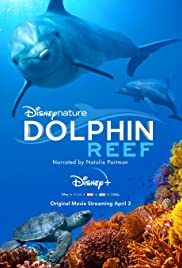 Watch Movie Dolphin Reef
