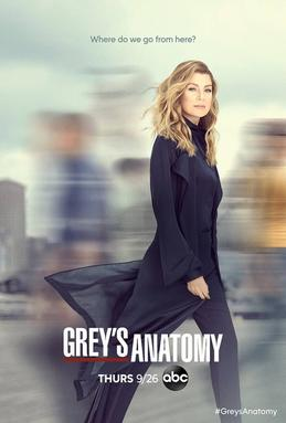 Watch Movie Grey's Anatomy - Season 16