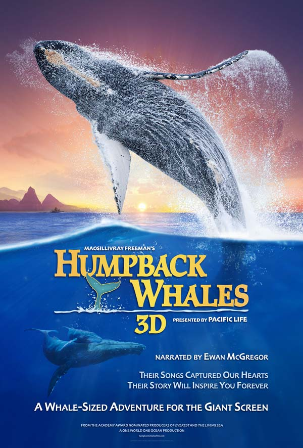 Watch Movie Humpback Whales