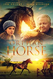 Watch Movie Orphan Horse