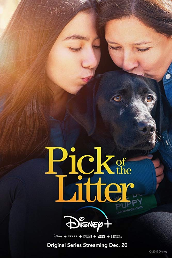 Watch Movie Pick of the Litter - Season 1
