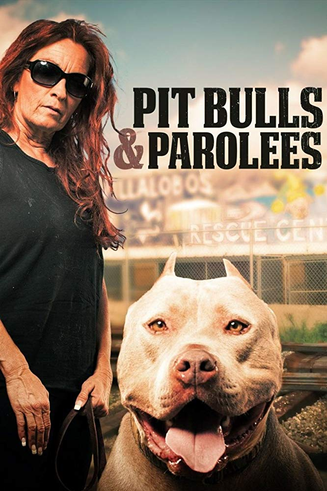 Watch Movie Pit Bulls and Parolees - Season 13