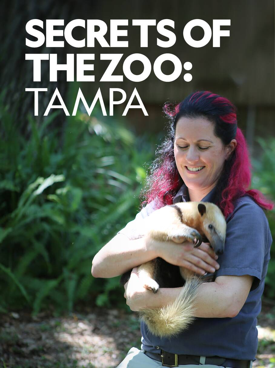 Secrets of the Zoo: Tampa - Season 2