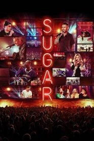 Watch Movie Sugar - Season 1