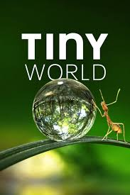 Watch Movie Tiny World - Season 1