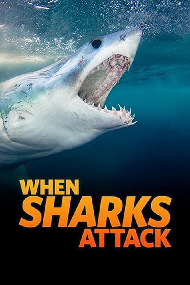 When Sharks Attack - Season 6